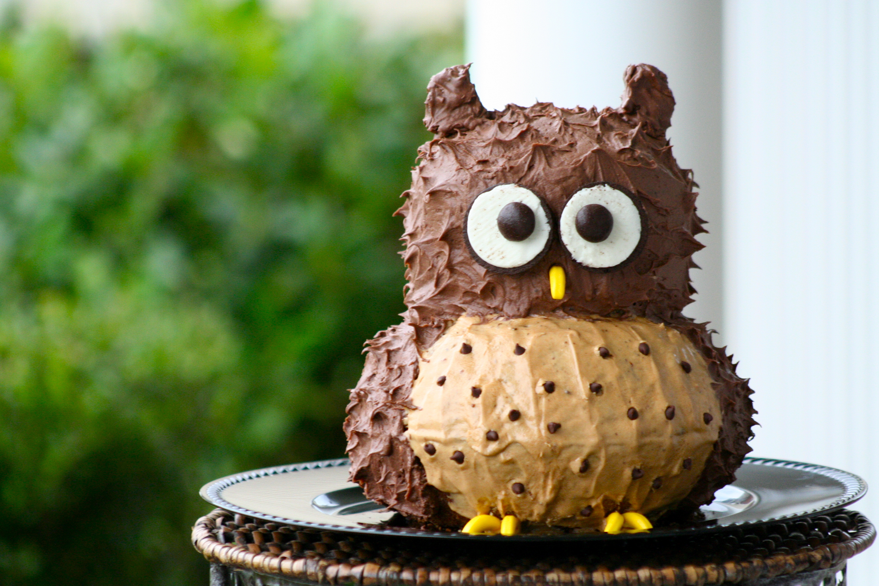 Little Owls Cakes