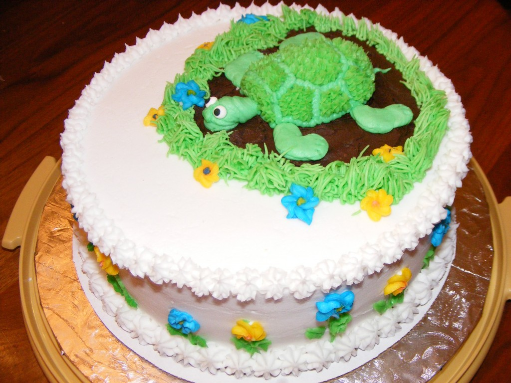 Turtle Cake Decoration