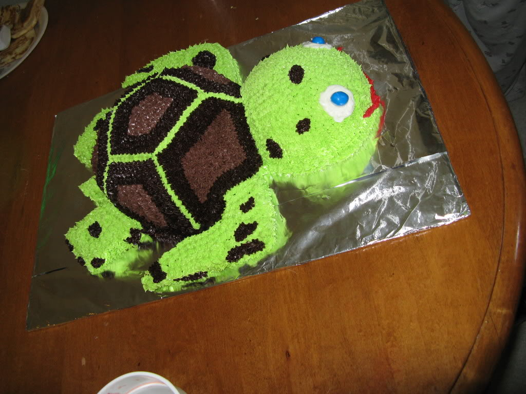 Turtle Cake Ideas
