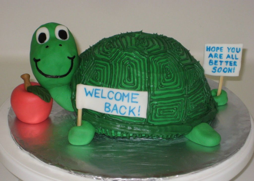 Turtle Cakes Images