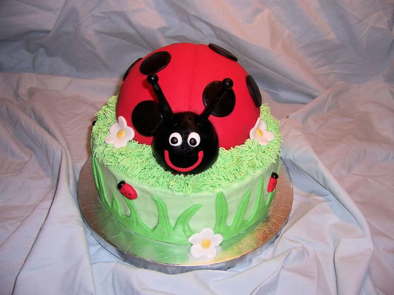Ladybug Birthday Cake Ideas