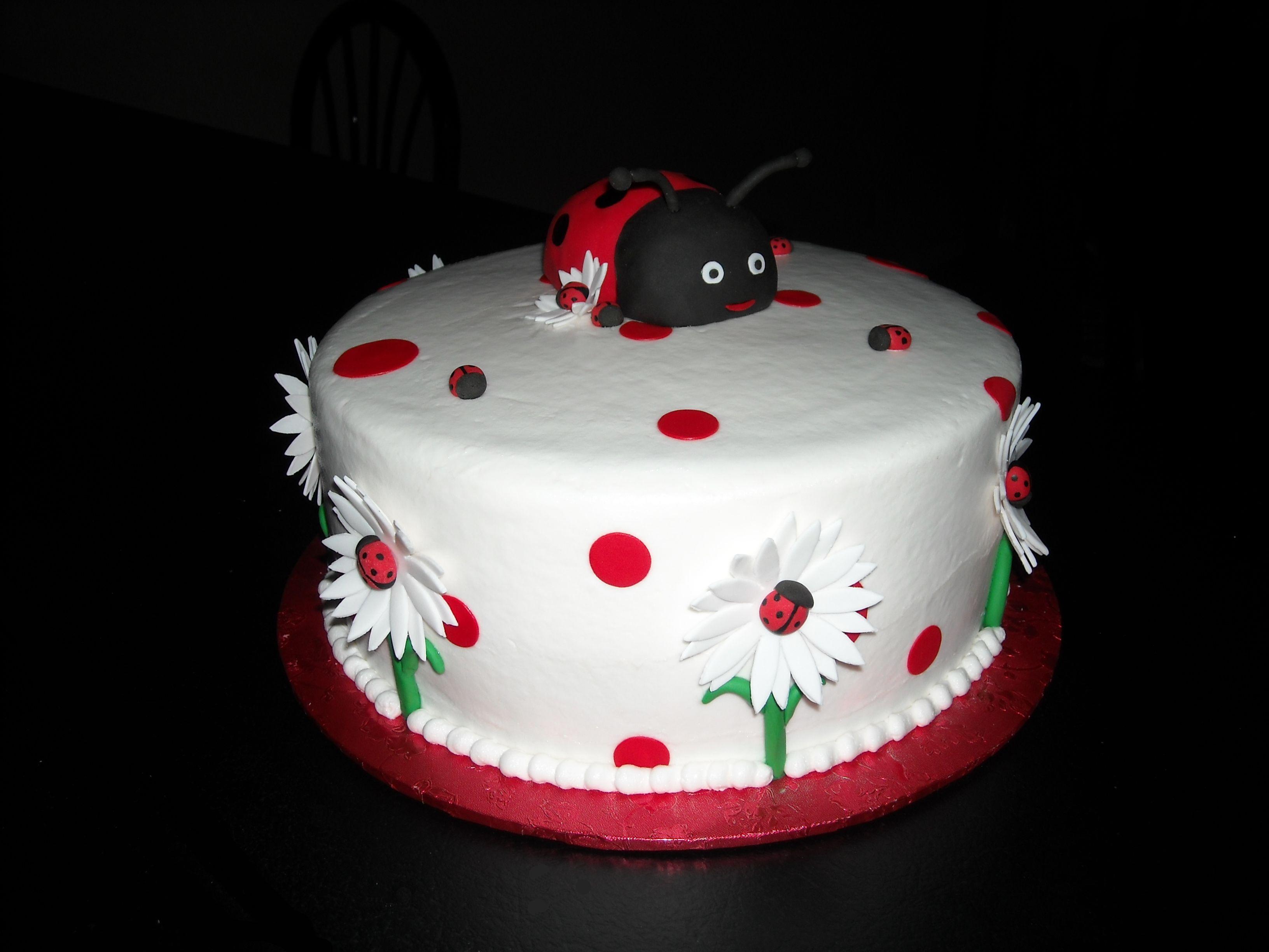 Awe Inspiring Ladybug Cakes Decoration Ideas Little Birthday Cakes Funny Birthday Cards Online Aeocydamsfinfo