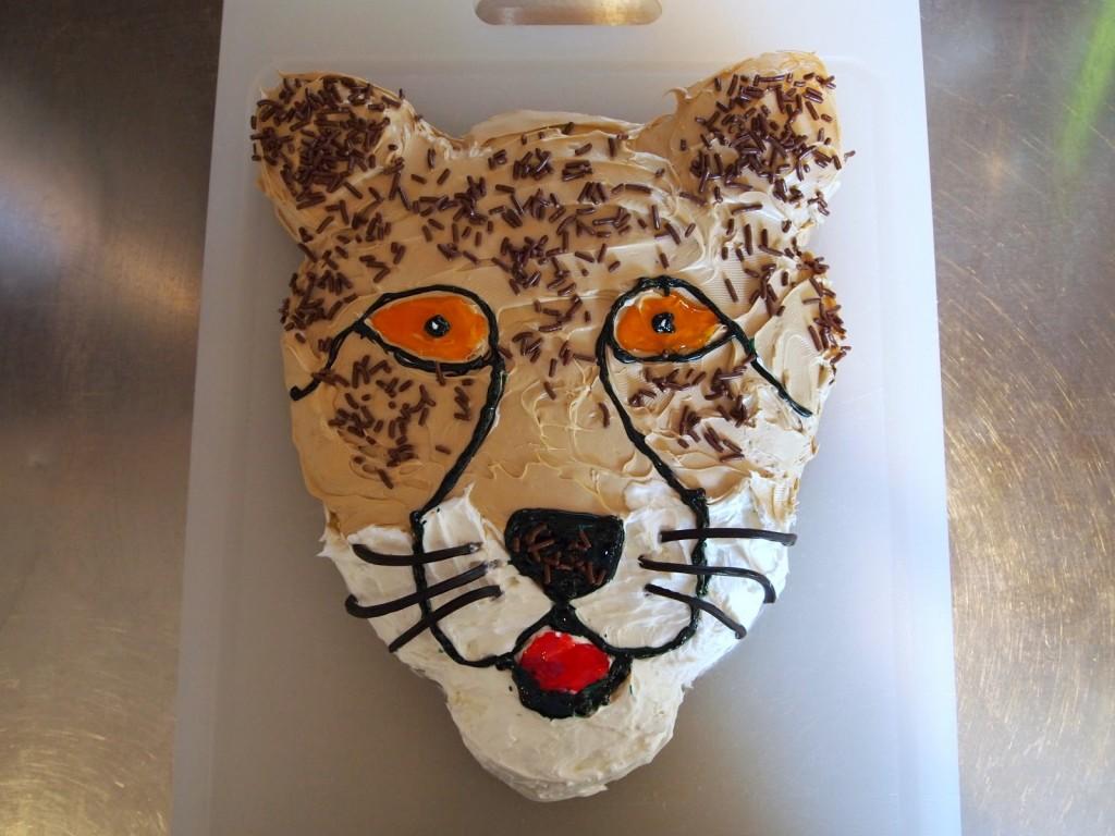 Cheetah Cake Ideas