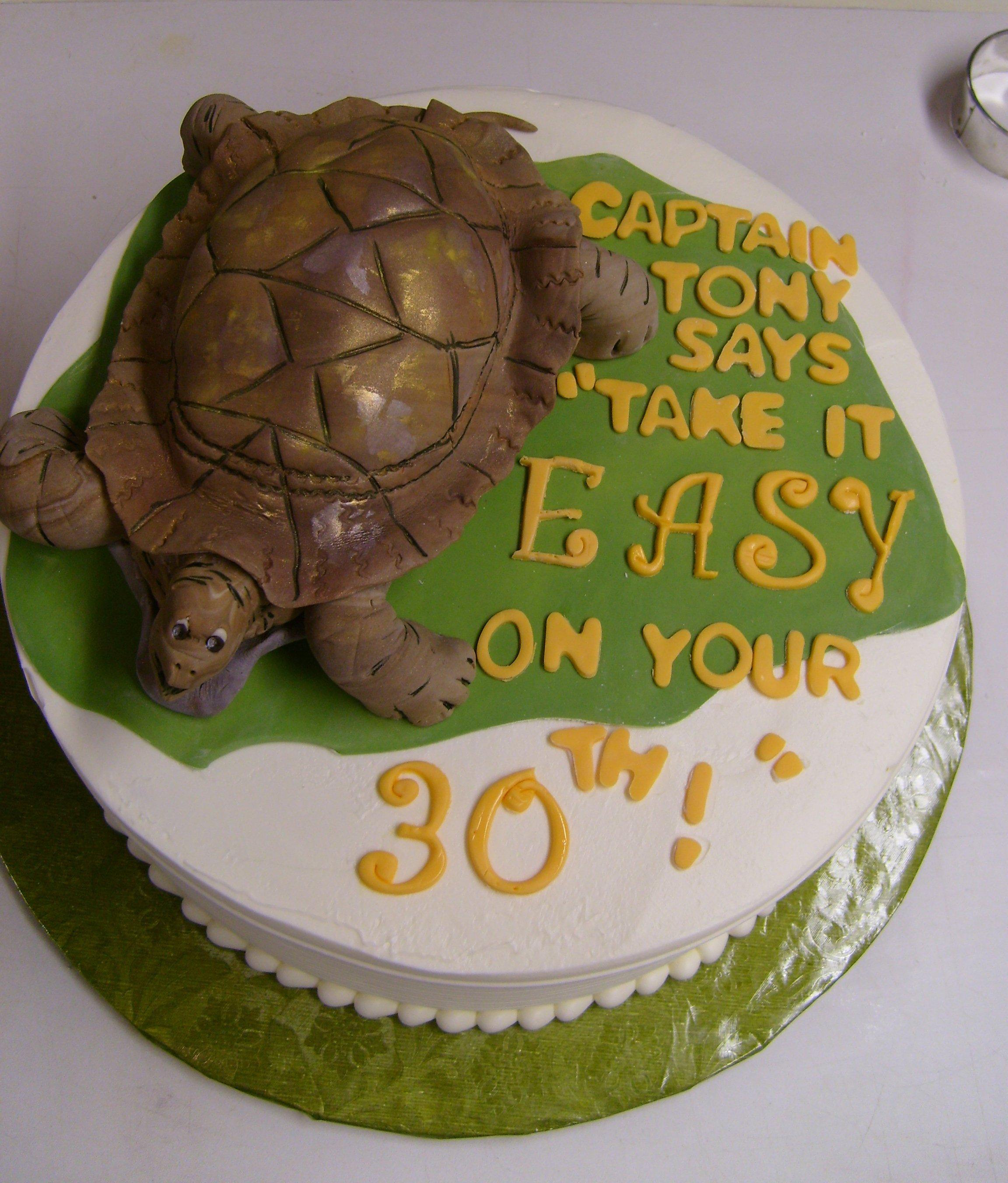 Excellent Turtle Cake Decoration Ideas Little Birthday Cakes Funny Birthday Cards Online Alyptdamsfinfo