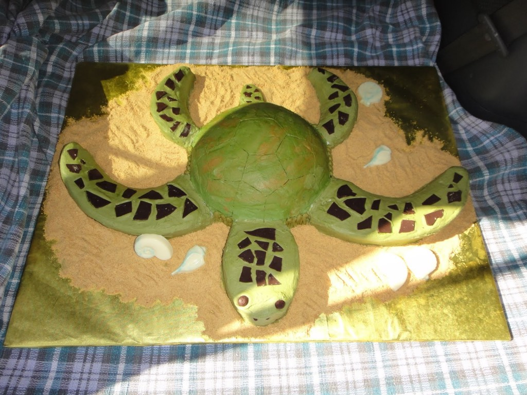 Turtle Cake Images