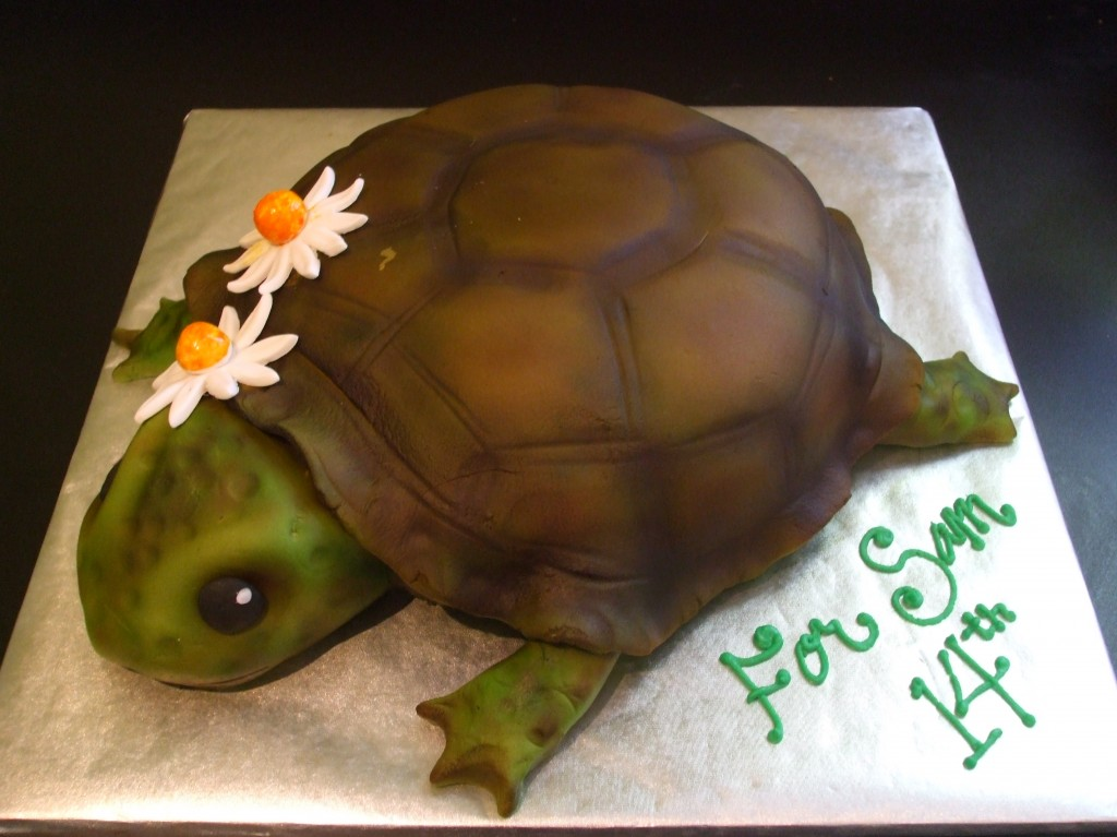 Turtle Cakes Ideas